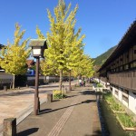 津和野を訪れるなら、やはり秋がおすすめです